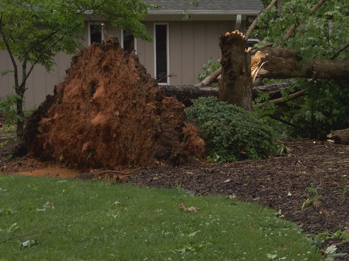 Friday's storm causes power outages in Gaston County