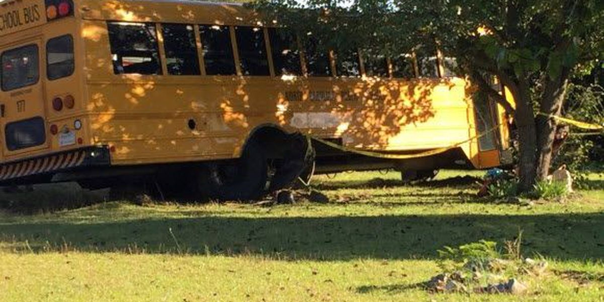 Johnston County, NC students report injuries after school bus hit by Mustang