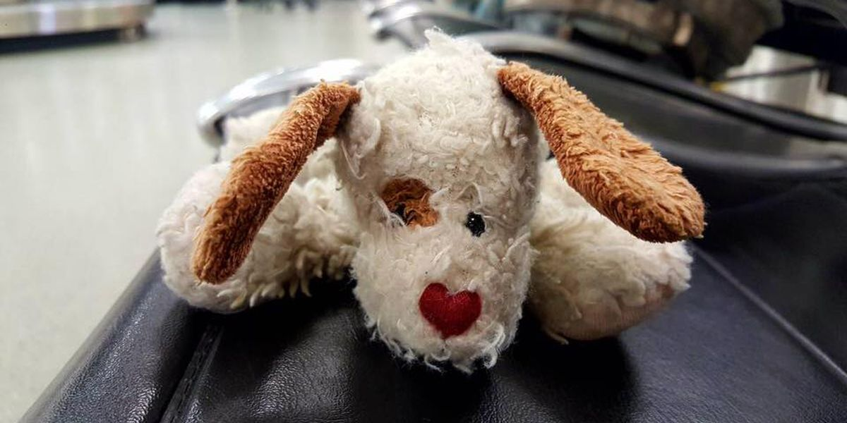 SHARE ALERT: Child's stuffed puppy left behind at Charlotte airport