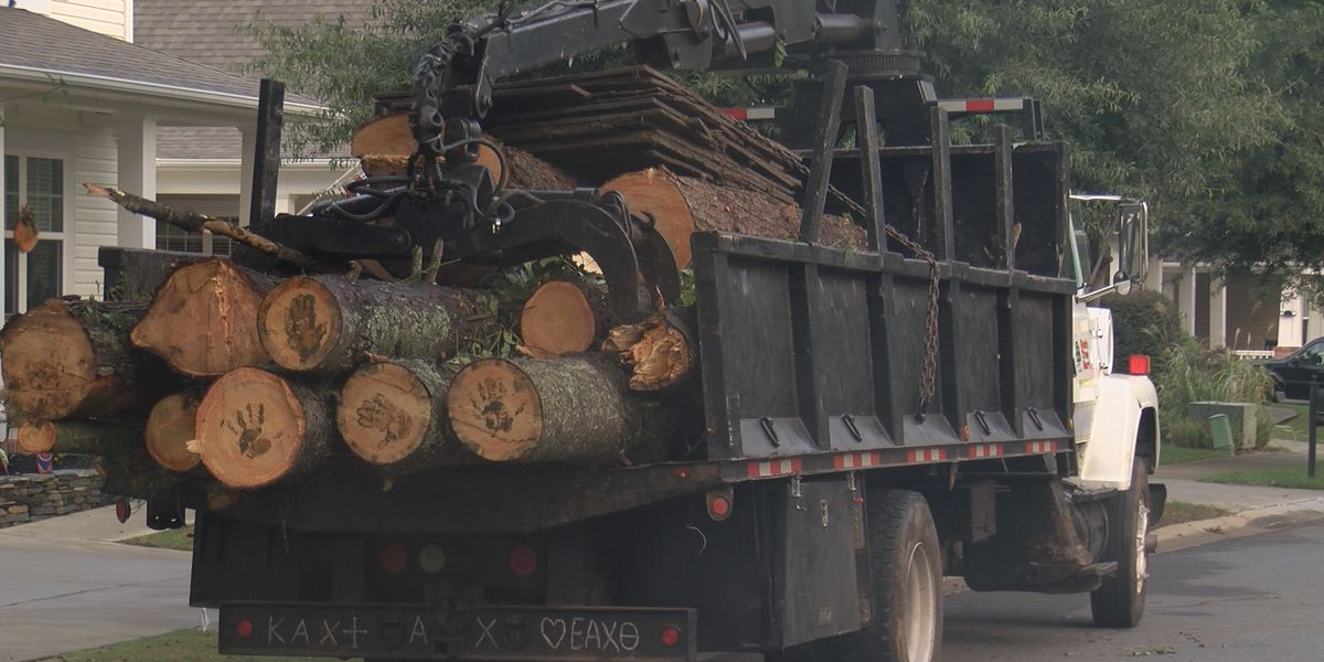 Tree trimming continues as Charlotte residents brace for Hurricane Michael