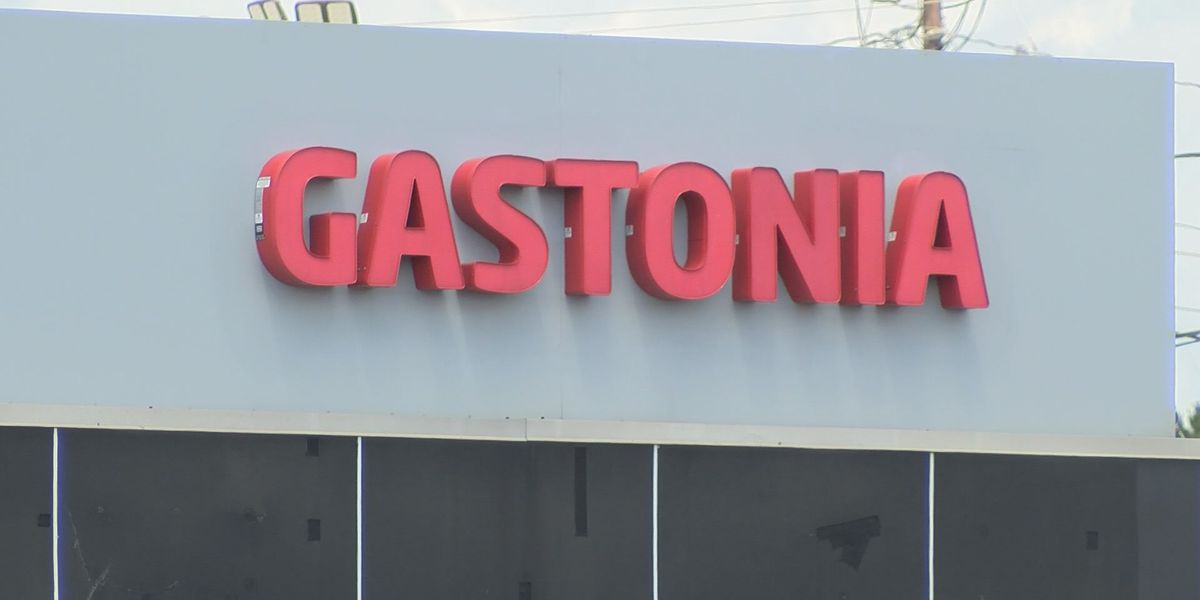 Lawsuit filed against Kia of Gastonia claims employees 'condoned customers inflation of their income'
