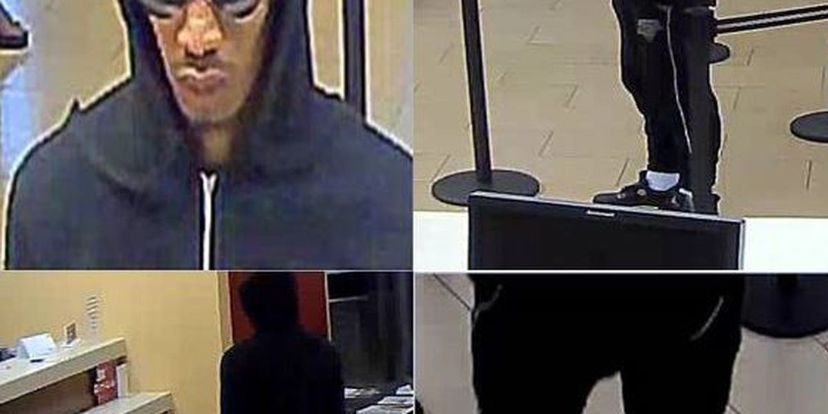 CMPD searching for bank robber in north Charlotte