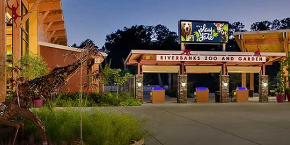 Riverbanks Zoo and Garden extends temporary closing amid COVID-19 through April