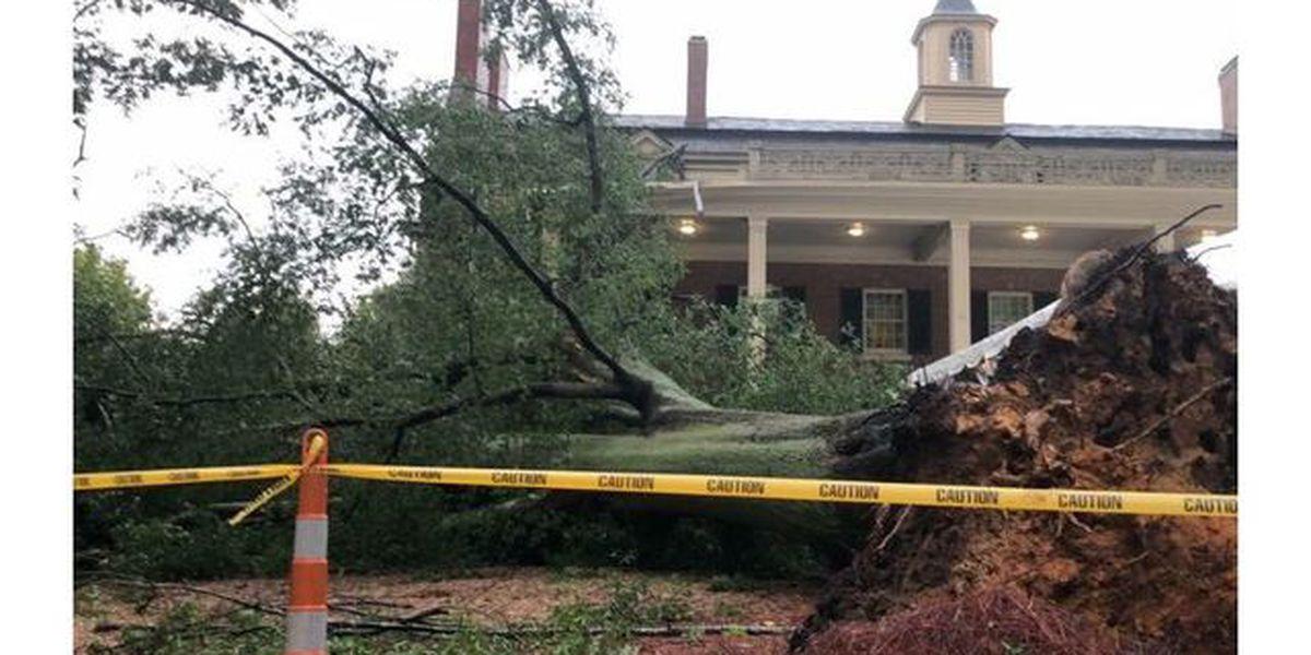 Tree falls on historic Carolina Inn on UNC's campus