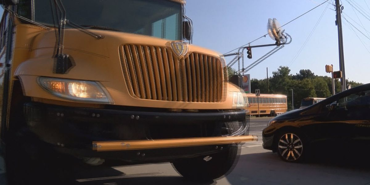 Veteran CMS bus driver says district is not cleaning school buses