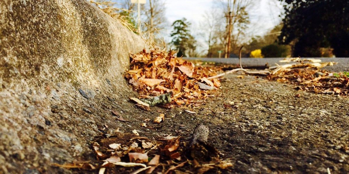 Loose leaf collection ending soon in Kannapolis