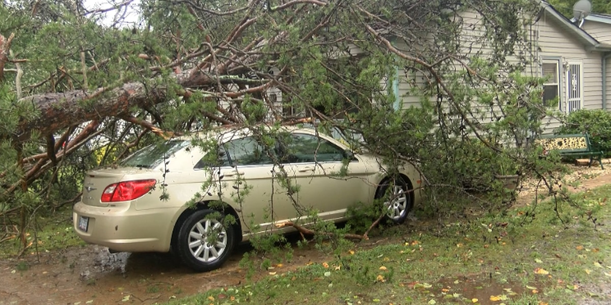 Dozens of trees fall, power outages across Rowan County