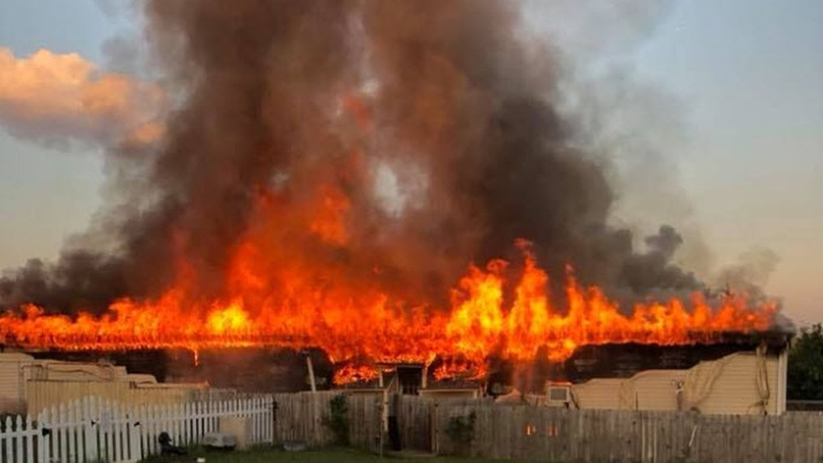 43 dogs saved, several killed in massive fire at rescue in York County
