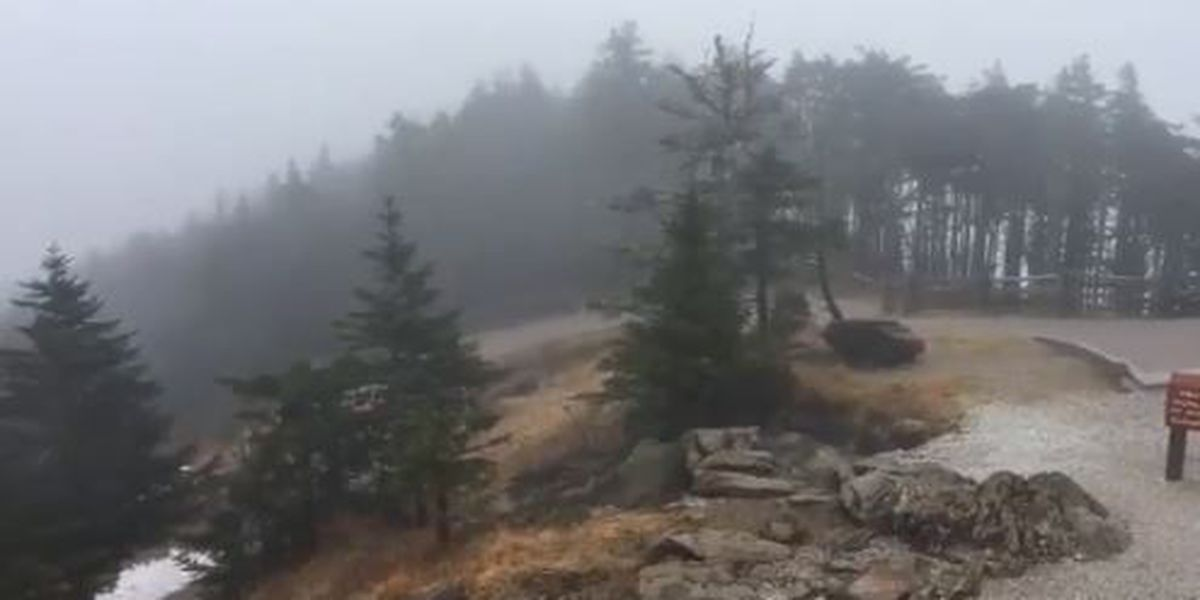 Mount Mitchell ends 2018 with unofficial NC rain record and wettest year in the Eastern USA