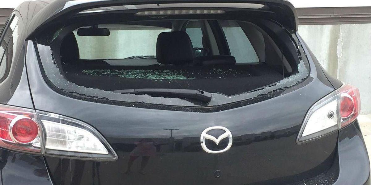 Man claims his car was shot by shotgun at Plaza Midwood auto shop
