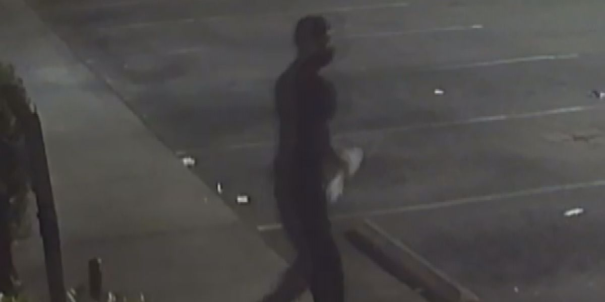 Crime Stoppers: Police looking for thief who broke into west Charlotte businesses