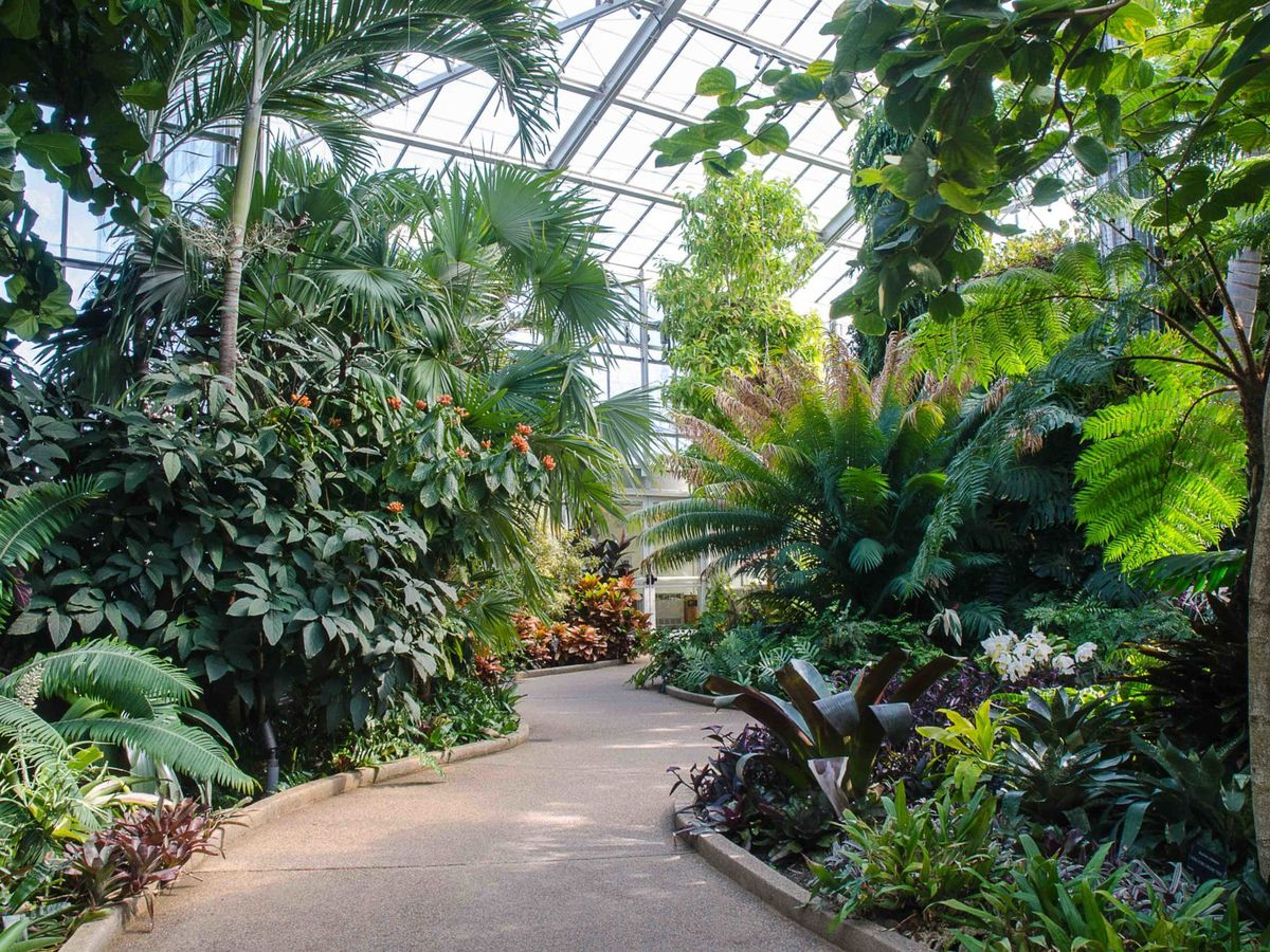Daniel Stowe Botanical Garden closing indefinitely, staff reduced to 9 due to COVID-19 crisis