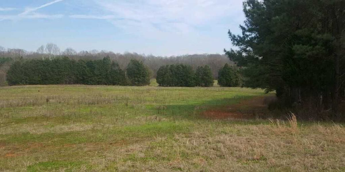 The LandTrust for Central NC acquires 40-acre property in Rowan adjoining South Yadkin River property