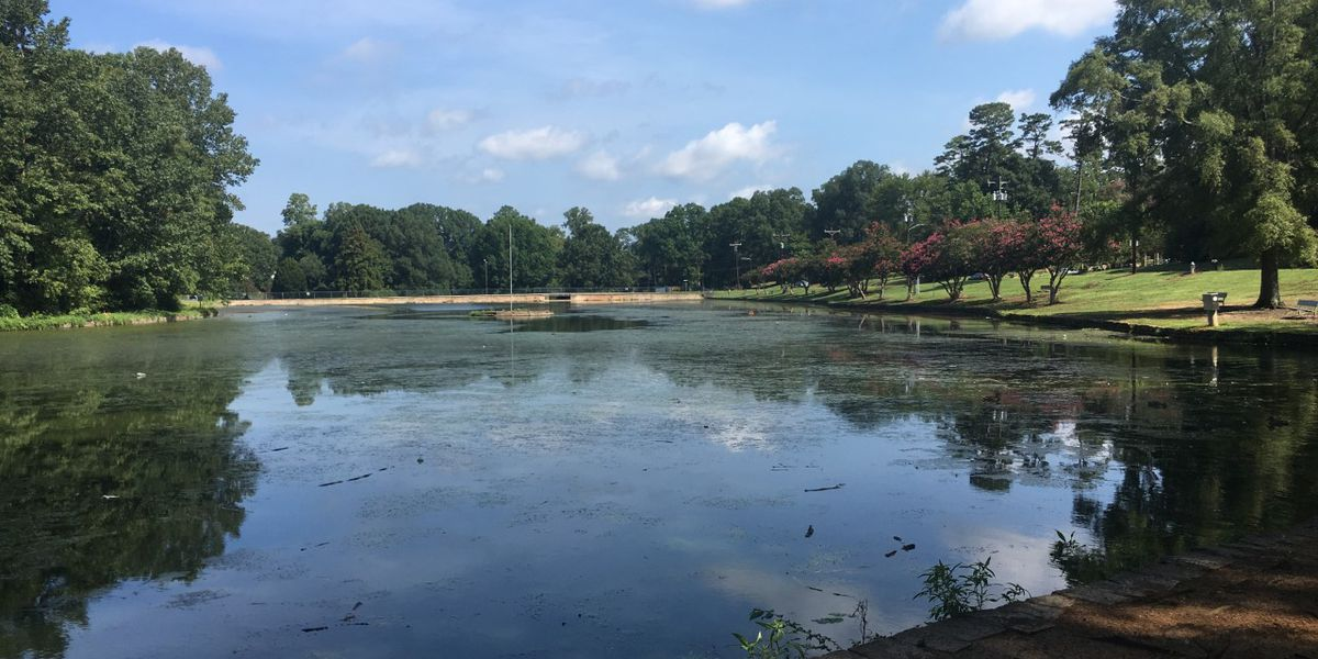 Salisbury City Park lake looking rough, city working on a fix