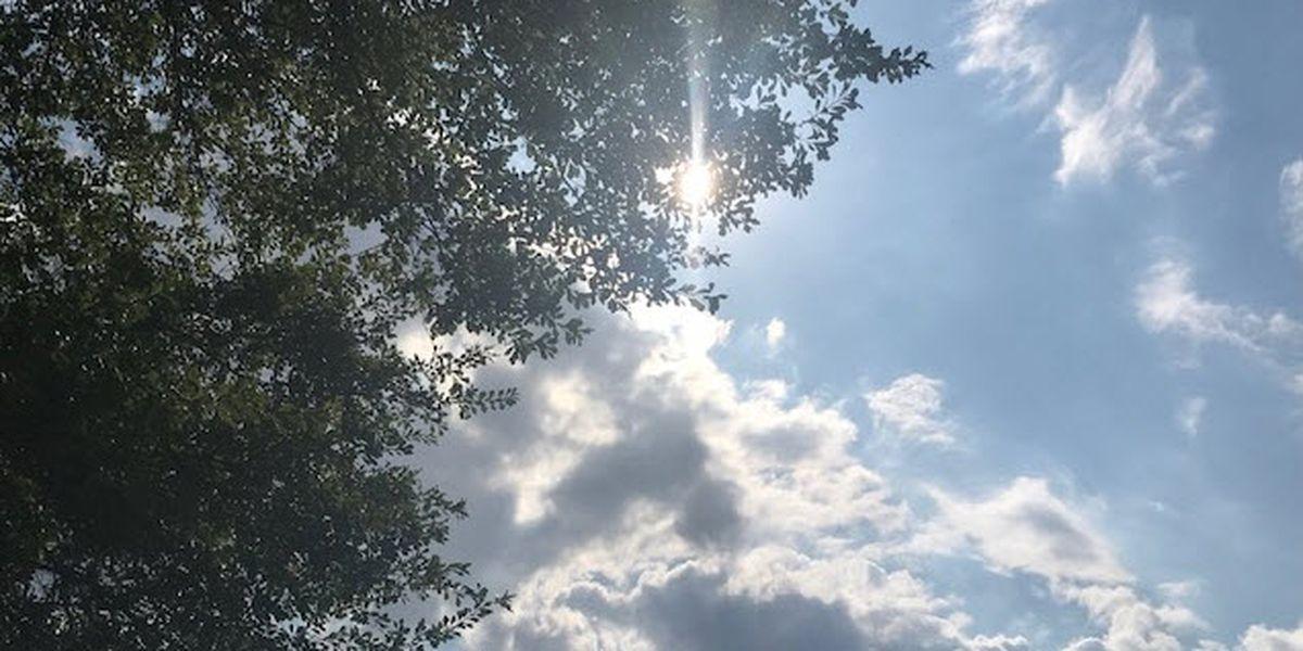 Seasonal summer weather hangs around for the weekend