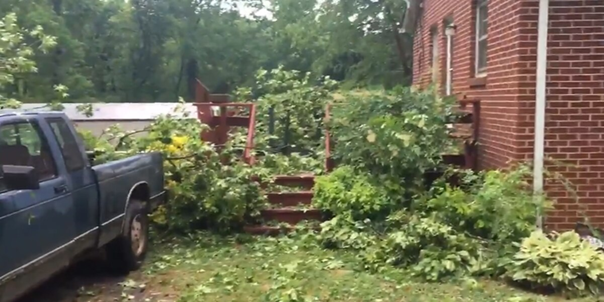 Man okay after tree limbs crush deck at home in Lincoln County