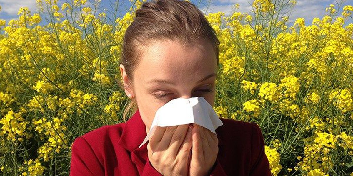 Spring allergy season started early, getting worse