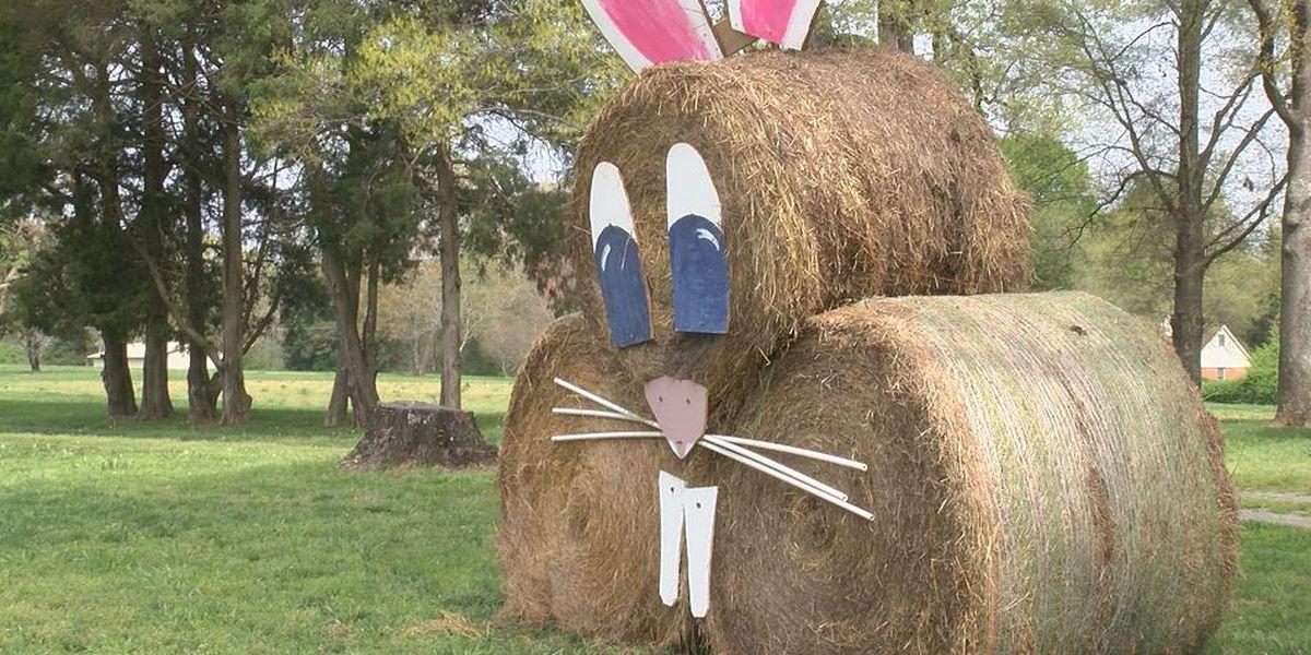 Union Co. farmer creates seasonal 'hay art' for neighbors