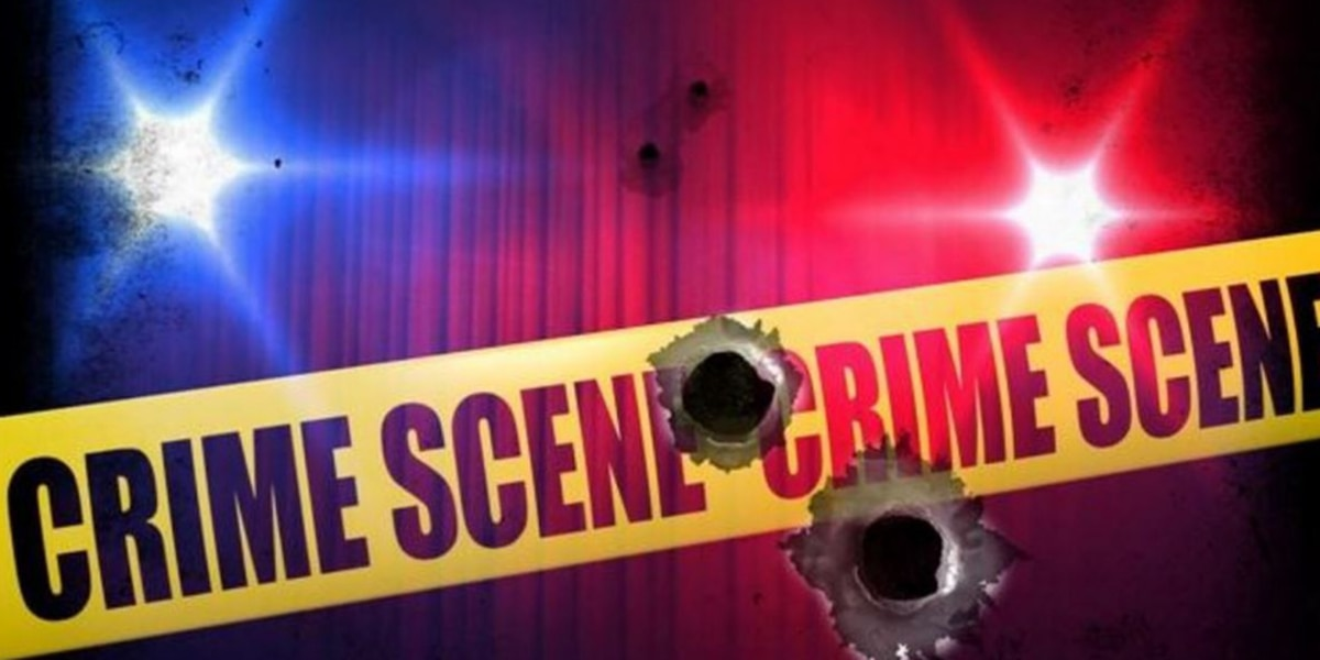 N.C. homeowner shoots unruly man through door after he refuses to leave