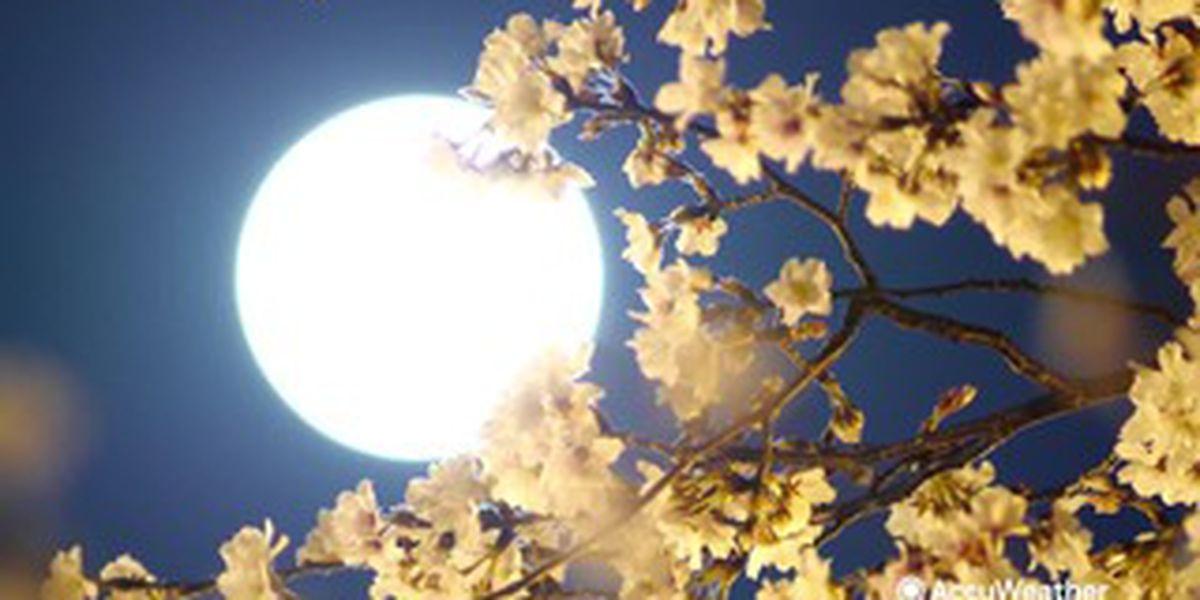 June's full strawberry moon rises Friday