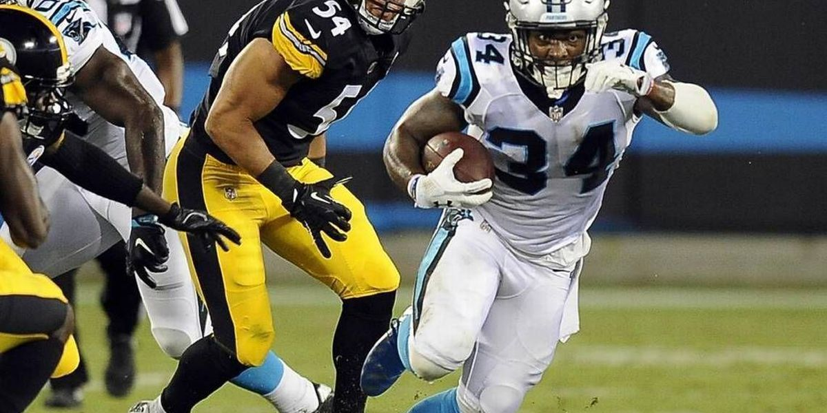 Ahead of 53-man cut, final statements, frustration for Panthers in loss to Steelers
