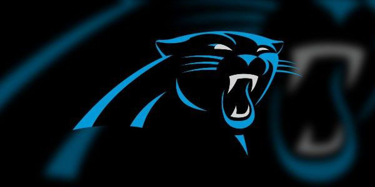 BLOG: Panthers open another Camp Wofford