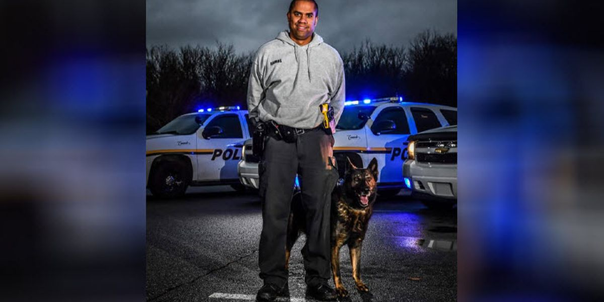 'Rest easy my friend.' Concord PD says goodbye to retired K-9 officer