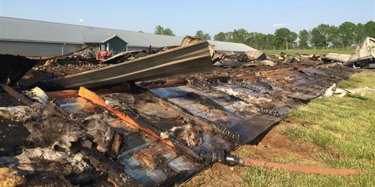 Thousands of chickens killed in Iredell County fire, sources say