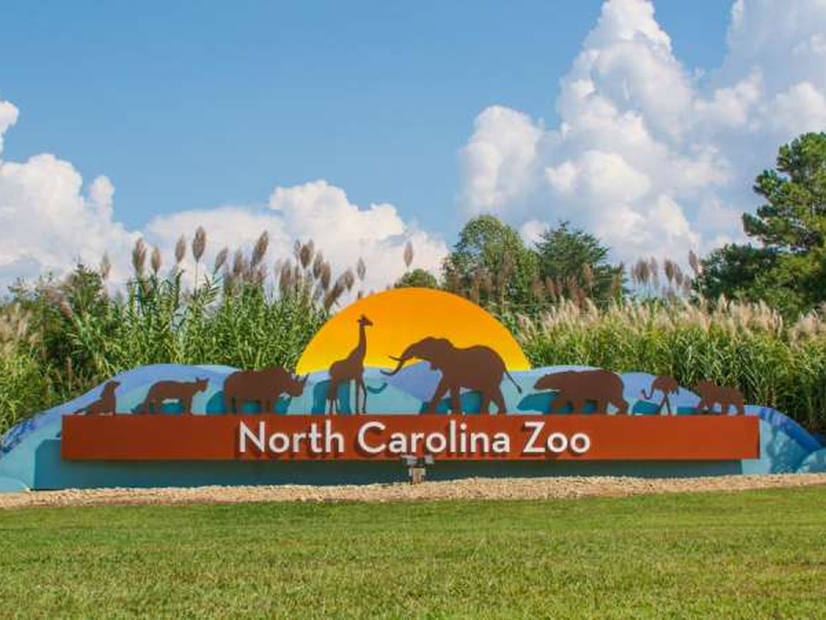 N.C. Zoo ready for expansion if lawmakers OK funding
