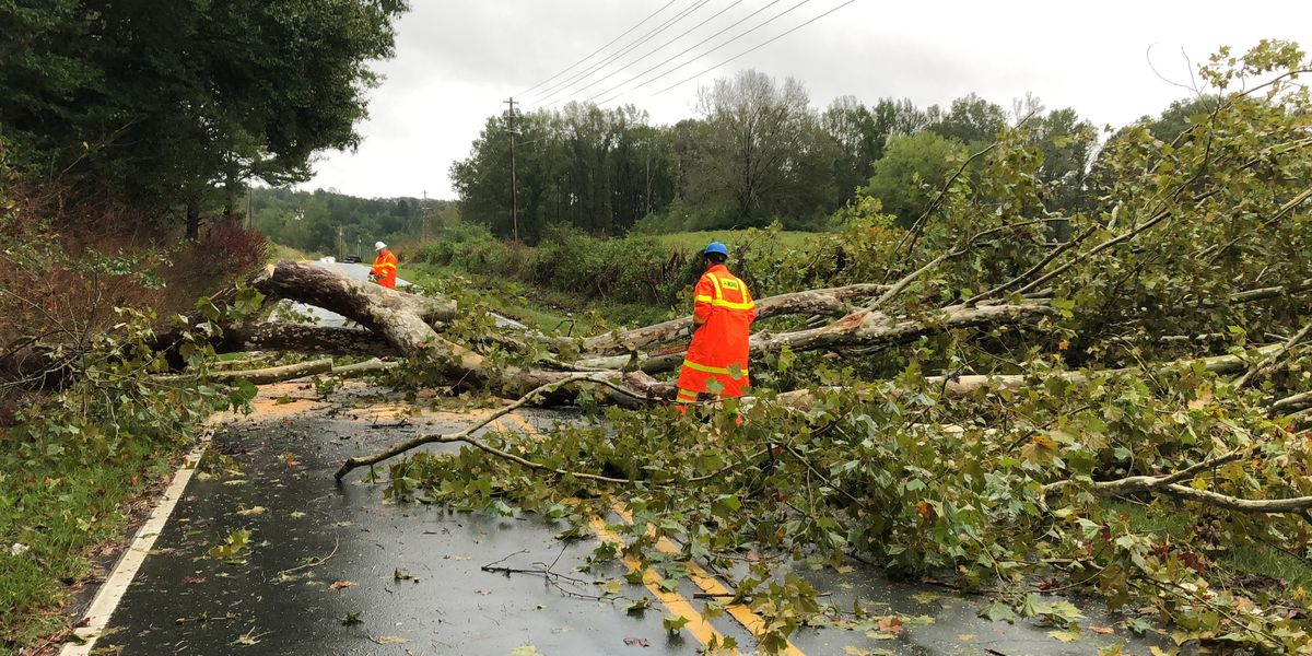 Anson County suffers downed trees, power outages and road damage after Michael whips through