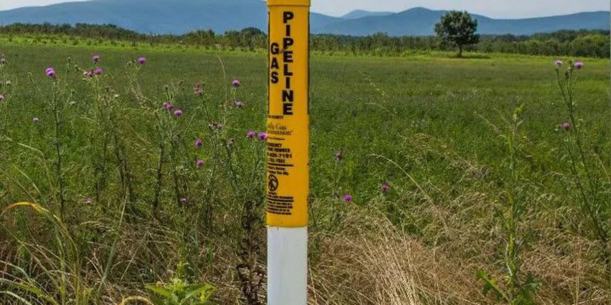 Power companies agreed to pay $11M in environmental mitigation for pipeline permit