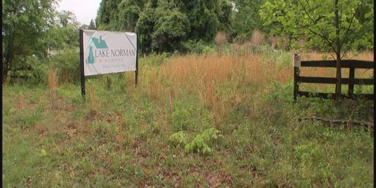 WBTV Investigates: What happened to the Iredell Animal Adoption Center?