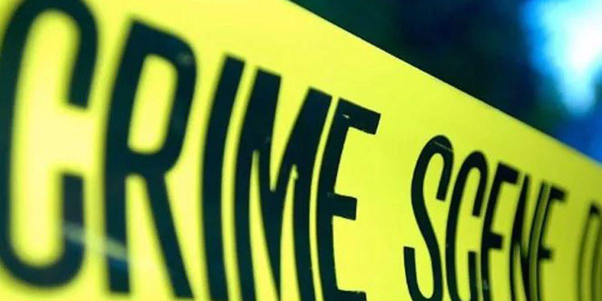 Salisbury police investigating shooting death of 71-year-old man