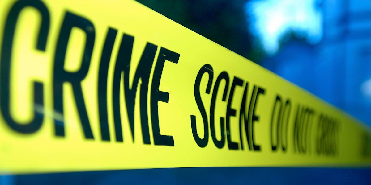 Couple found dead in apparent murder-suicide worried over healthcare bills, deputies say