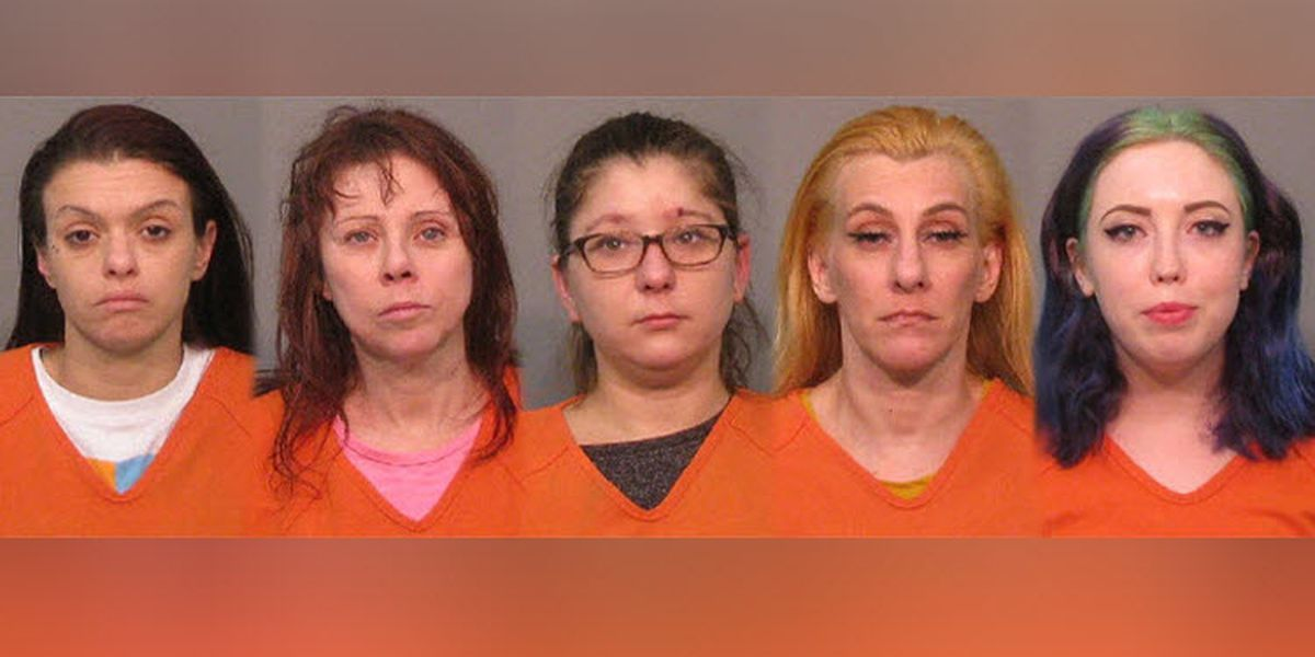 Officers arrest, cite 6 in human trafficking investigation in York County