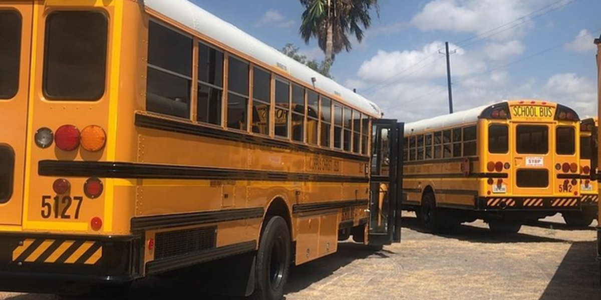 New app allows parents to track their child's bus ride to and from school