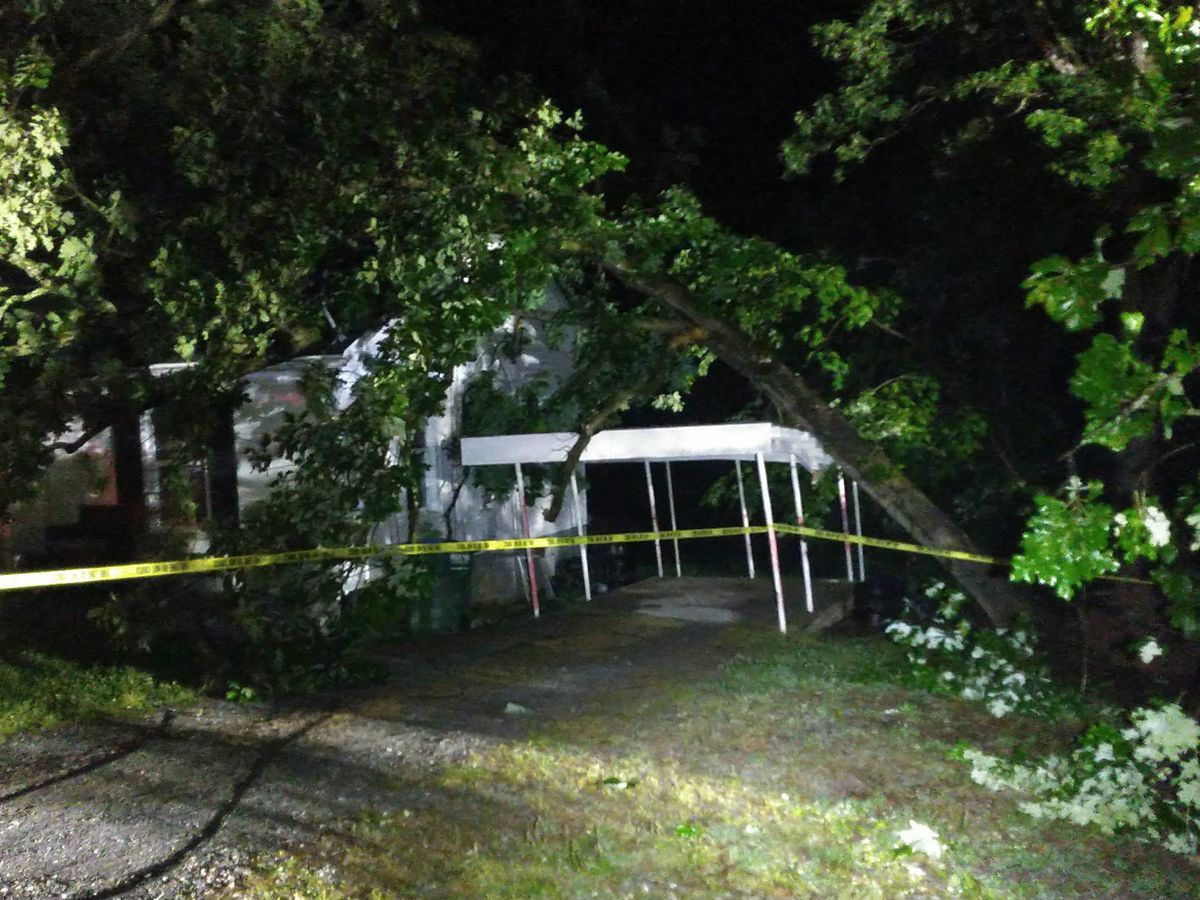 Family displaced after tree falls on house in Landis
