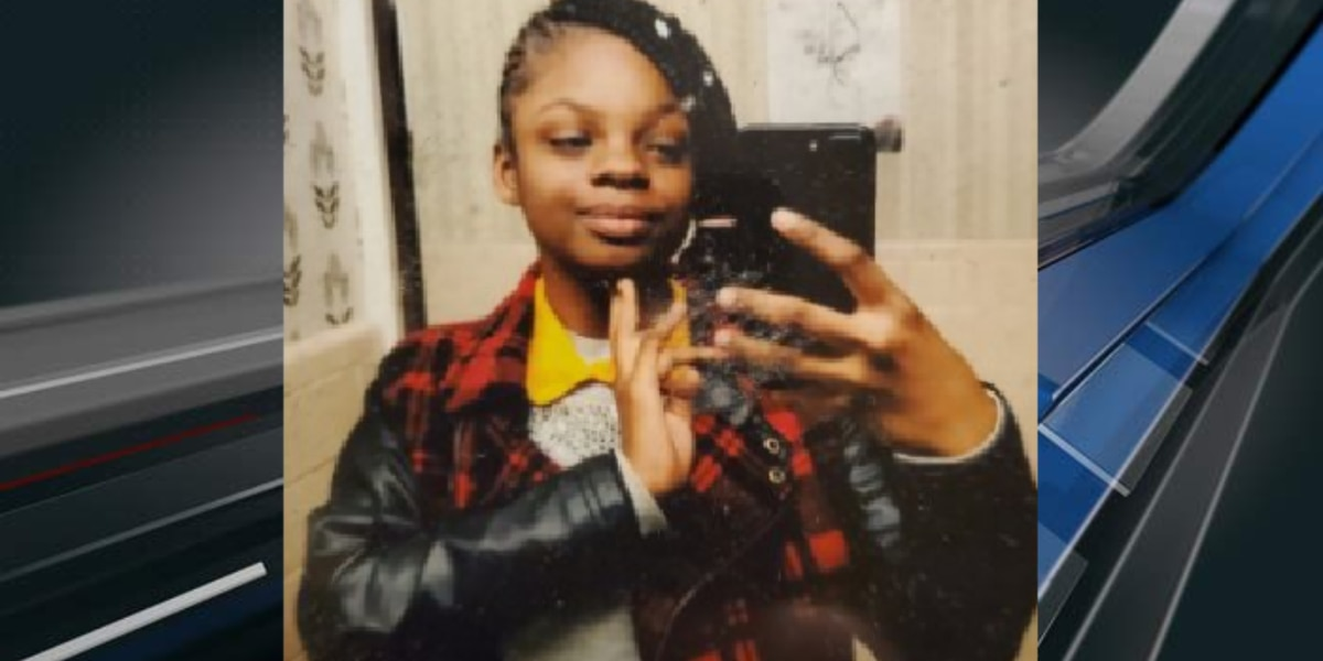 Police searching for missing Mount Pleasant teen