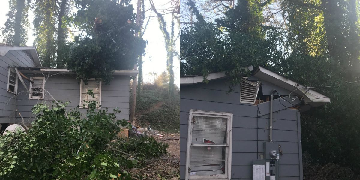 Tree falls, severely damages home in Stanley