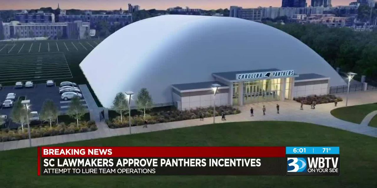 Senate approves multi-million tax break bill to bring Panthers to SC