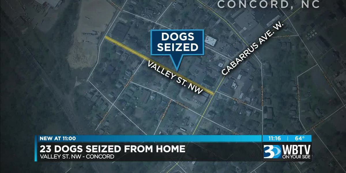 23 dogs seized, one found dead at now-condemned home in Concord