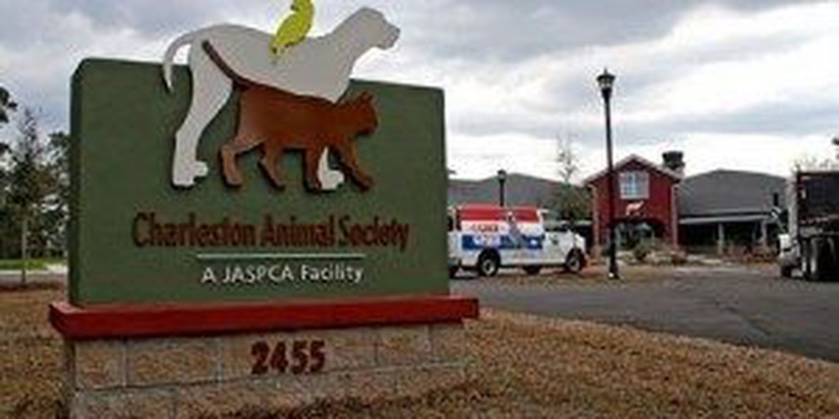 S.C. animal shelters experiencing 'unprecedented overcrowding'