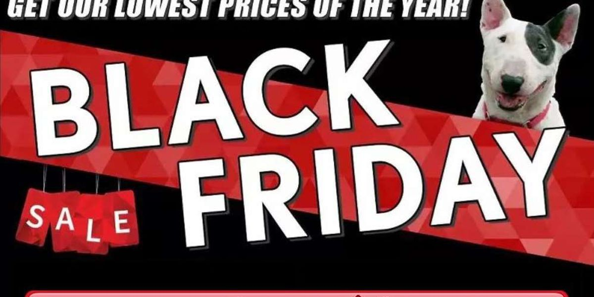 The Black Friday Sale has arrived at Toyota of North Charlotte!
