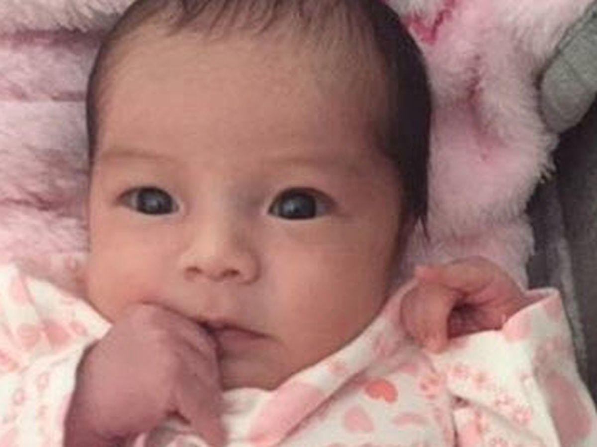 NC girl chosen as Gerber's adorable new Spokesbaby
