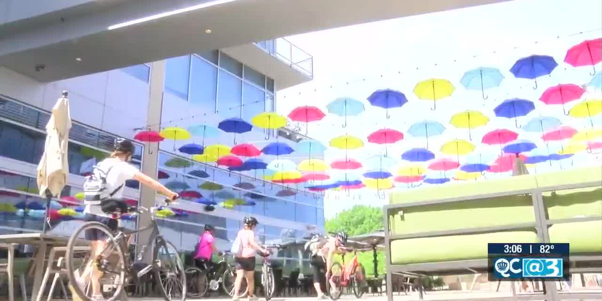 Look up! This new art exhibit features nearly 100 colorful umbrellas
