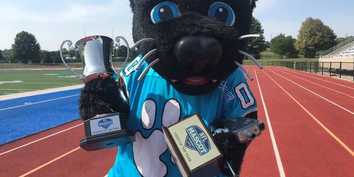 Panthers' Sir Purr Wins Mascot of the Year