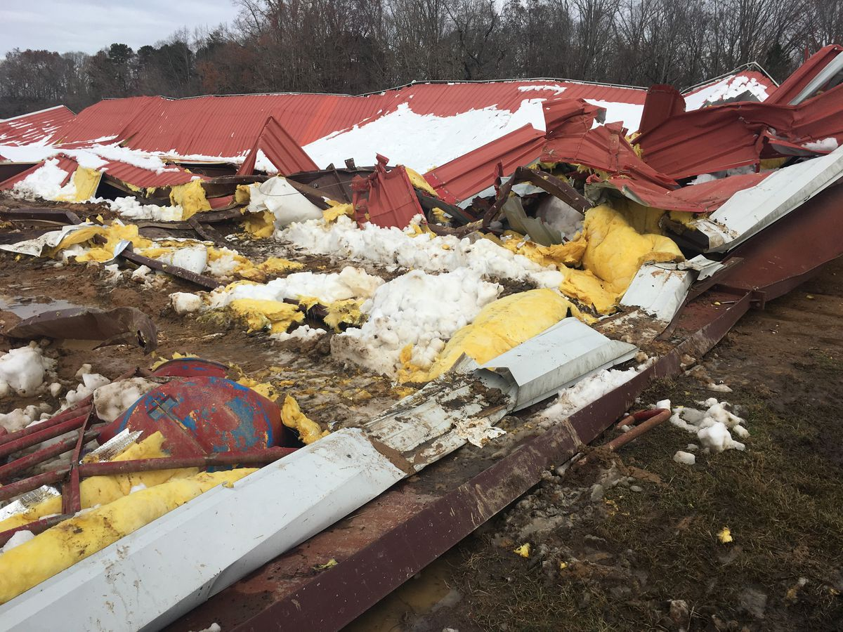 Arena collapse kills horses during winter storm