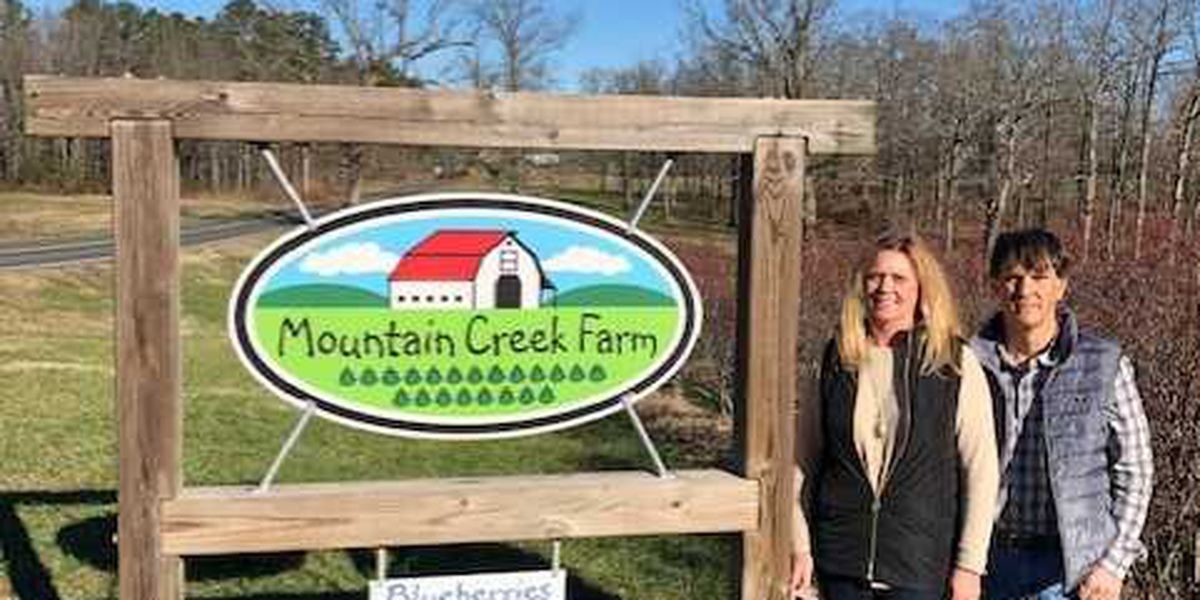 Three Rivers Land Trust conserves Mountain Creek Farm in Stanly County