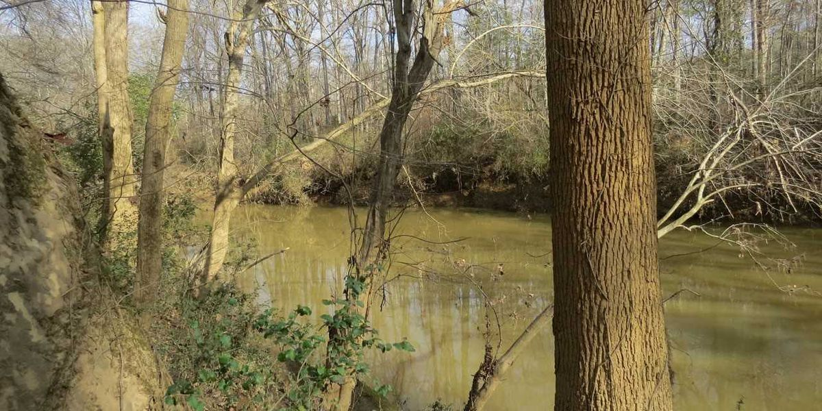 Three Rivers Land Trust acquires 9.4-acre property on Uwharrie River