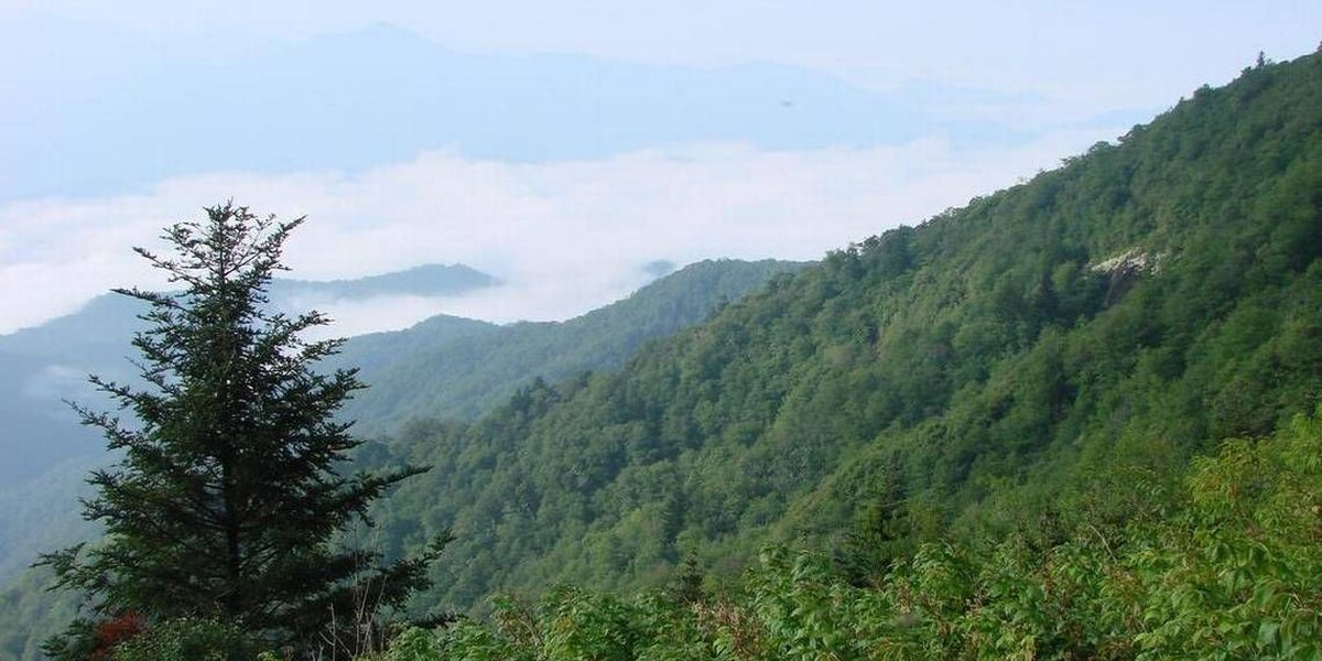 83-year-old woman falls to her death off Blue Ridge Parkway overlook